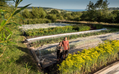 Meet your food grower: Lally and Tomas of Springtail Farm