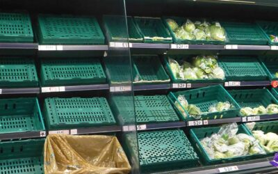 This is why we need more local food production: food shortages could be imminent…