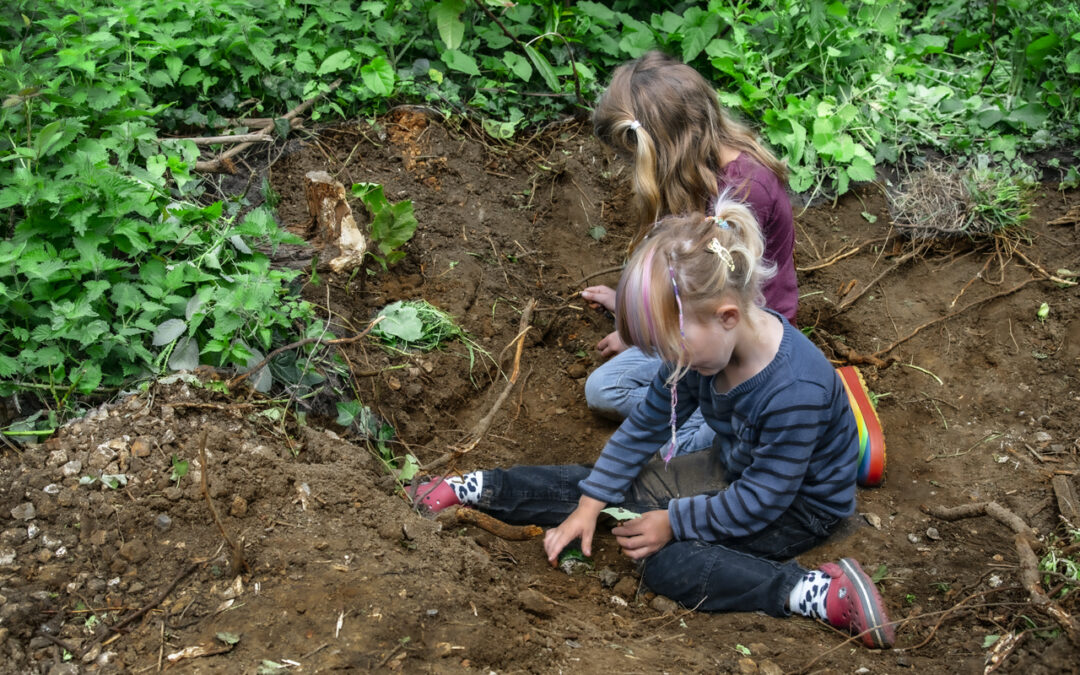 Edible Gardens projects – Bridport Primary and St Mary's Primary
